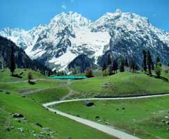 Package Tour To Patnitop