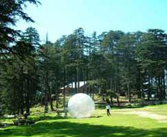 Patnitop Honeymoon