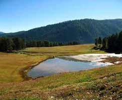 Patnitop Holiday Package
